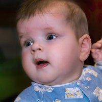 Портрет Апполинарии Сергеевны, шести месяцев от роду :: Владимир Шамота