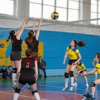 Волейбол 7 :: Валентин Кузьмин