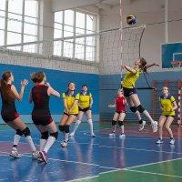 Волейбол.. :: Валентин Кузьмин