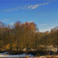 Сельский парк из 18-го века :: Юрий