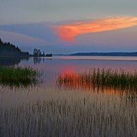 Белая ночь на озере :: Валерий Талашов