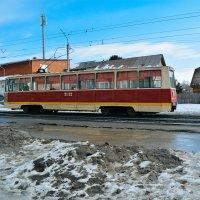 Трамвай :: Света Кондрашова