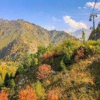 краски осени в горах :: Марат Макс