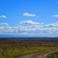 Осенний пейзаж. :: Татьяна ❧
