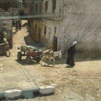 Египет. :: Татьяна Калинкина