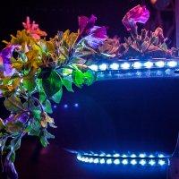 Ночные краски :: Дмитрий Костоусов