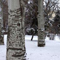Роспись по дереву... :: Алексей Попов