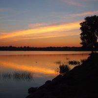 Закат над Сиверским озером :: Михаил Юрьевич