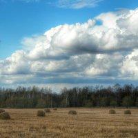 На весеннем поле осенняя солома :: Милешкин Владимир Алексеевич