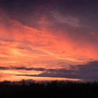 Апрельский закат :: Евгения Каравашкина