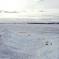 Белое безмолвие Севера :: Виктор