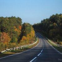 Краски Осени :: Татьяна Аистова