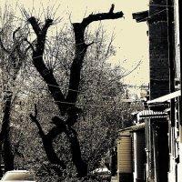 фигурная резьба по дереву :: Николай Семёнов