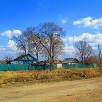 Сельский пейзаж. :: Татьяна ❧
