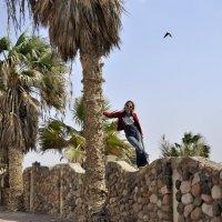 Заброшенный египетский отель :: Lukum