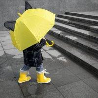 Малыш и зонт :: Наталья