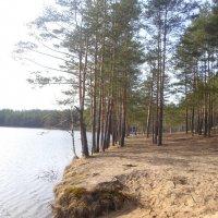 Жуковское озеро :: BoxerMak Mak