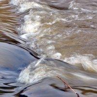 Весенние воды :: Сергей F