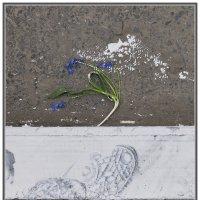...весна... :: Ольга Нарышкова