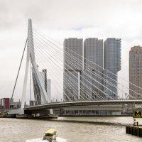 Река Маас, Роттердам. Мост Эразма :: Witalij Loewin