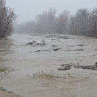 Наводнение. :: Береславская Елена