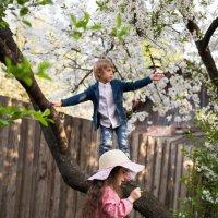 Весна на Вишневой улице :: Яна Шкитырь