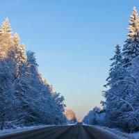 Зимняя дорога :: Алёнка Шапран