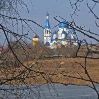 церковь в Гатчине :: Елена