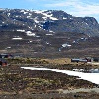 Суровое лето Норвегии :: Ольга