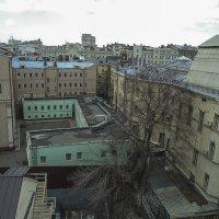 Московские крыши. :: Яков Реймер
