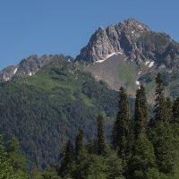 Горы Абхазии :: Natalia Furina
