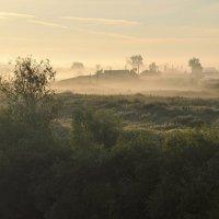 Туман в деревне :: Владимир Зыбин