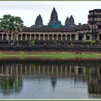 Пробуждение храма Ангкор :: Евгений Печенин