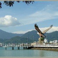 Лангкави - остров красного орла :: Евгений Печенин