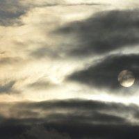 Небо зла :: Ангел Падший