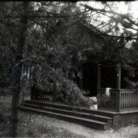Домик в лесу :: Artem Dzyuba
