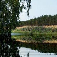 Озеро :: Павел Гусев