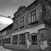 ... :: Светлана Кузнецова