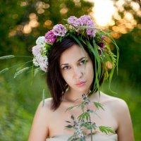 В лесу 2 :: Катерина Смирнова