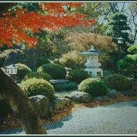 Осень в Японии :: Евгений Печенин