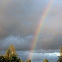 rainbow :: Никита Васильков