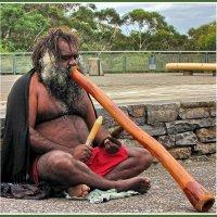 Абориген + Диджериду = Австралия :: Евгений Печенин