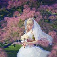 Свадебная прогулка по парку :: Владимир Торопов