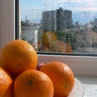 Солнце, дождь и апельсины...) :: Вероника Великих