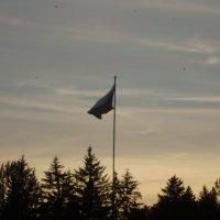 Российский флаг :: Ольга Чиженькова