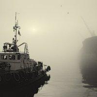 Туманное утро. :: Олег Куцкий