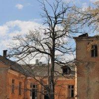 Старый дом... :: Олег Куцкий