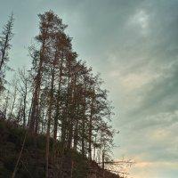 Розовые скалы вечером :: Павел Меньшиков