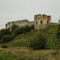 Пинськая крепость. :: Николай Сидаш