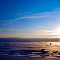 Финский залив :: Анастасия Громова